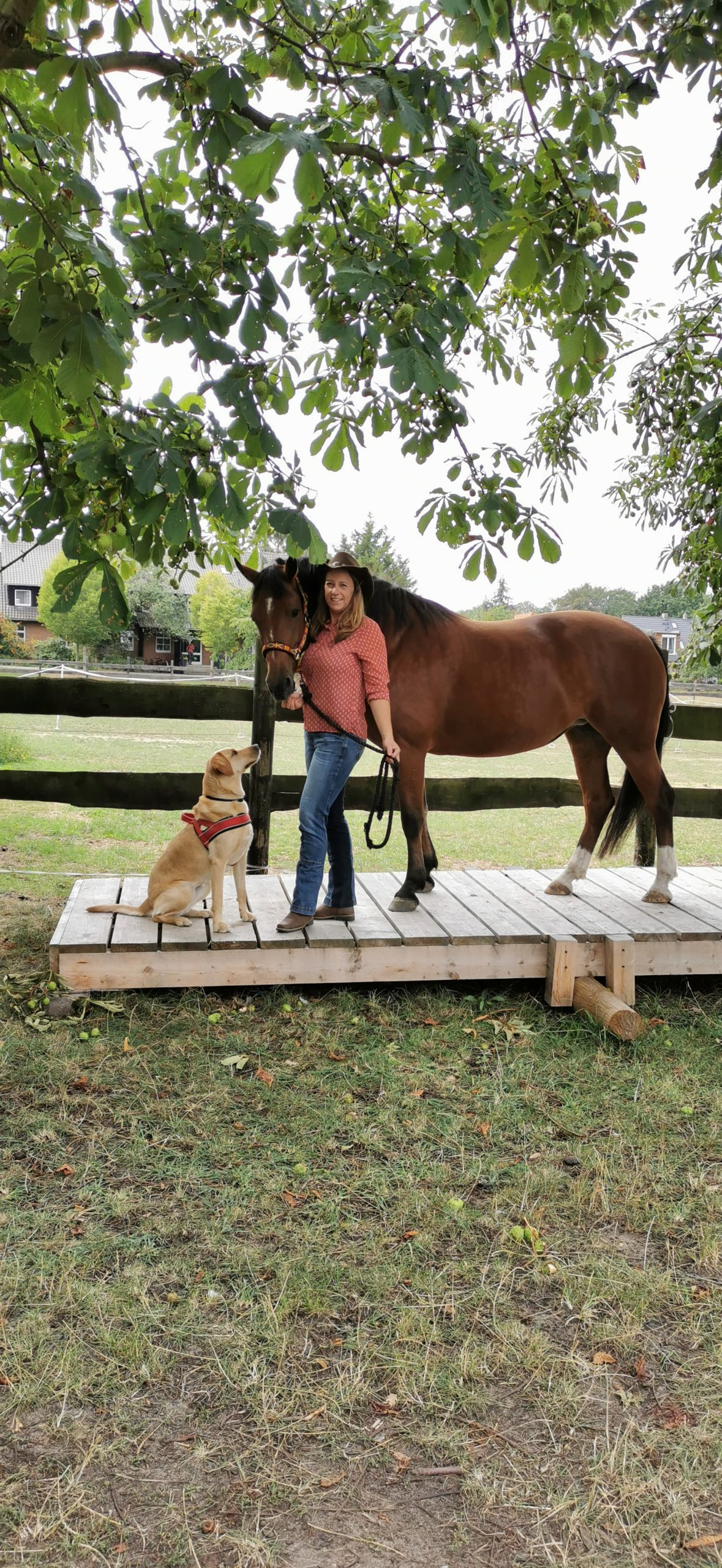 Foto alle Finja & Nevina & Doreen auf Wippe